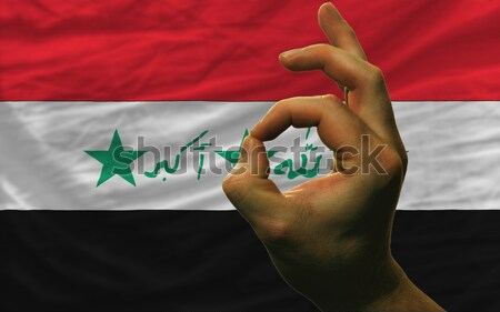 ok gesture in front of california us state flag Stock photo © vepar5