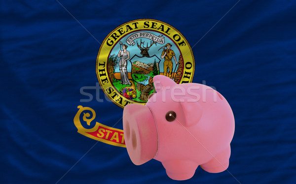 Zengin banka bayrak amerikan Idaho Stok fotoğraf © vepar5