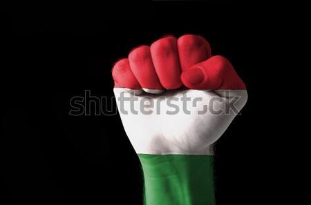 Puno pintado colores Bulgaria bandera bajo Foto stock © vepar5