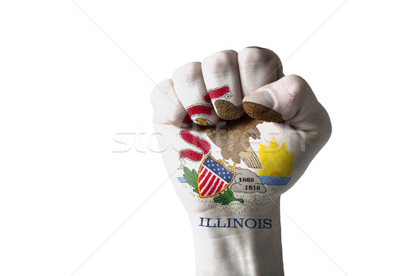 Fist painted in colors of us state of illinois flag Stock photo © vepar5