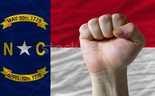 Zászló Észak-Karolina ököl teljes amerikai egész Stock fotó © vepar5