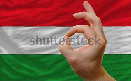 ok gesture in front of belarus national flag Stock photo © vepar5