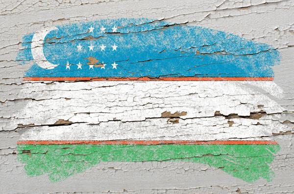 флаг Узбекистан Гранж текстуры окрашенный Сток-фото © vepar5