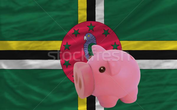 Rijke bank vlag Dominica besparing Stockfoto © vepar5