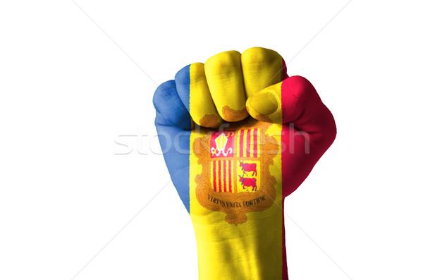 Vuist geschilderd kleuren vlag laag sleutel Stockfoto © vepar5