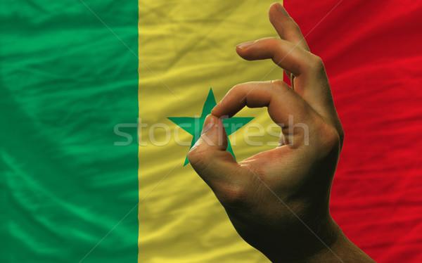 ok gesture in front of senegal national flag Stock photo © vepar5