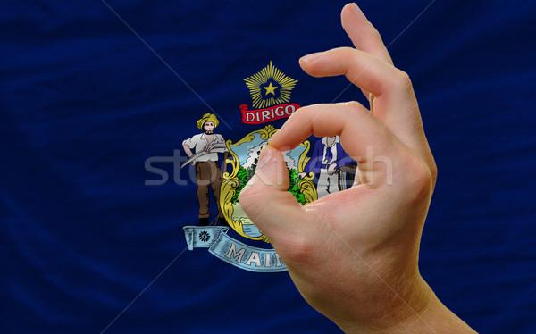 Gesto Maine bandeira homem Foto stock © vepar5