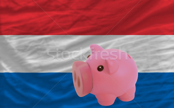 piggy rich bank and  national flag of holland    Stock photo © vepar5