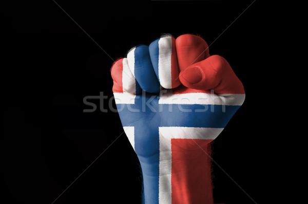 Puno pintado colores Noruega bandera bajo Foto stock © vepar5