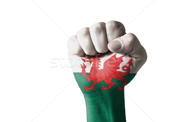 Fist painted in colors of wales flag Stock photo © vepar5