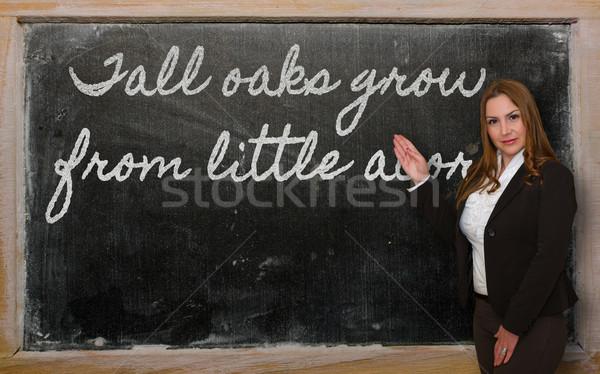 öğretmen büyümek küçük tahta Stok fotoğraf © vepar5