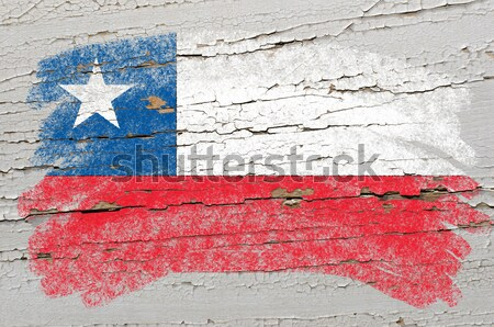grunge flag of US state of texas on brick wall painted with chal Stock photo © vepar5