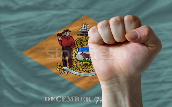 Bandera Delaware puno americano todo Foto stock © vepar5