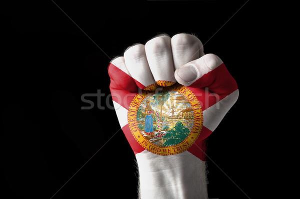 Puno pintado colores Florida bandera bajo Foto stock © vepar5