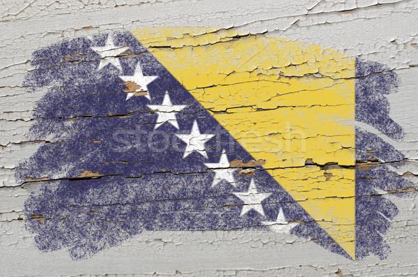 Bandera Bosnia Herzegovina grunge textura pintado Foto stock © vepar5