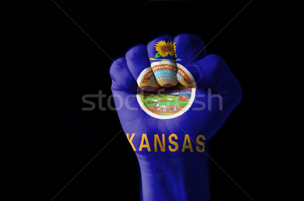 Fist painted in colors of us state of kansas flag Stock photo © vepar5