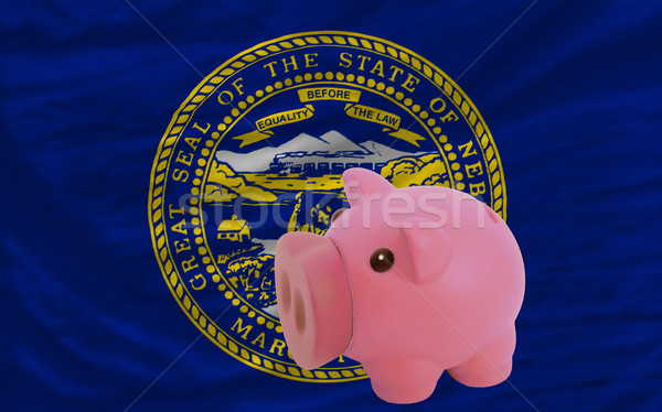 piggy rich bank and  flag of american state of nebraska    Stock photo © vepar5
