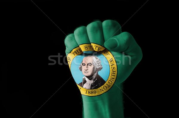 Puno pintado colores Washington bandera bajo Foto stock © vepar5