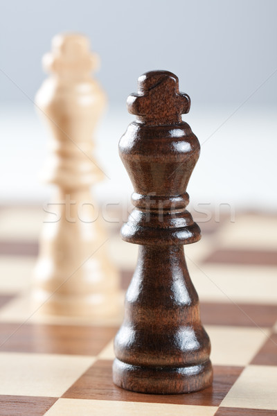 Two kings on chess board Stock photo © veralub