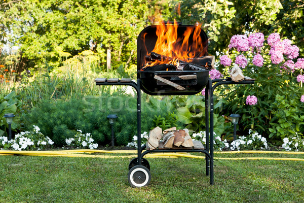 Flames in a barbecue Stock photo © veralub