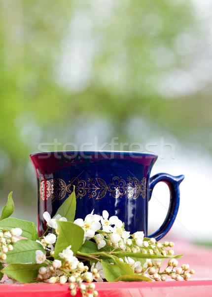 Cup caldo fiore di ciliegio tè Foto d'archivio © veralub