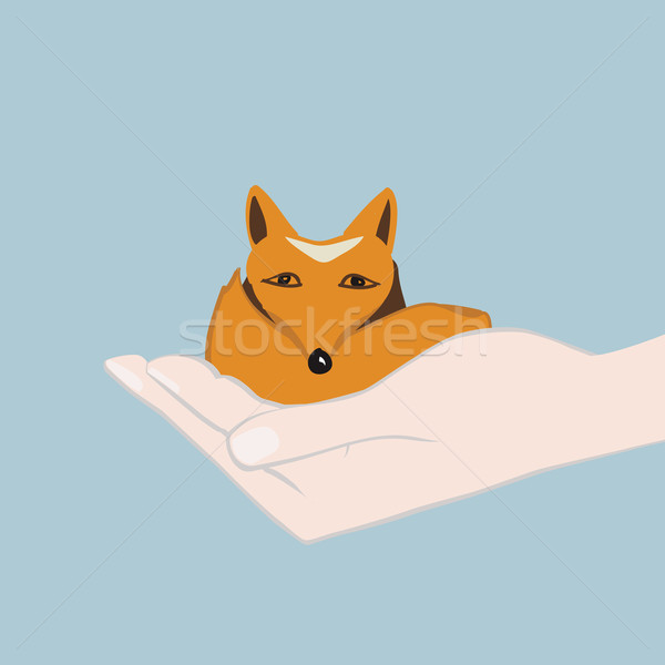 Sevimli küçük tilki el karikatür bakıyor Stok fotoğraf © veralub