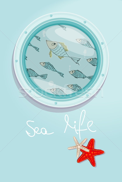 School of fish swimming past a ships porthole Stock photo © veralub