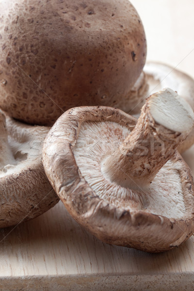Shiitake mushrooms Stock photo © veralub