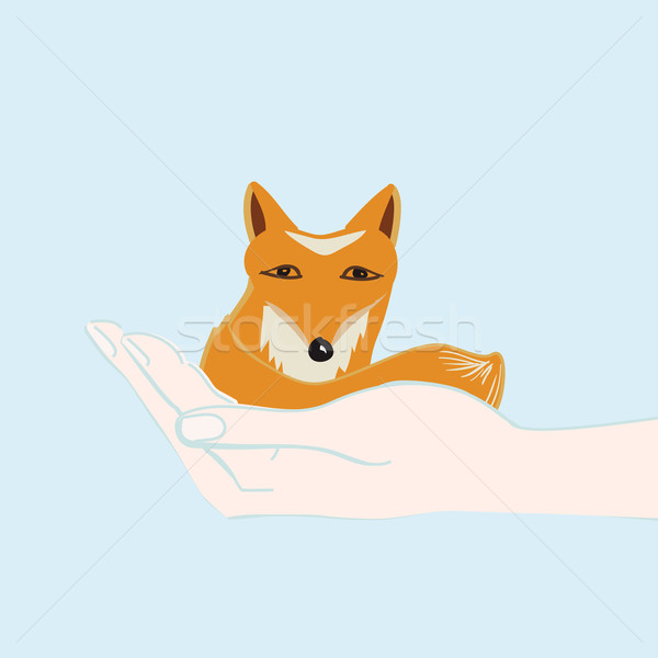 Little fox cupped in a hand Stock photo © veralub