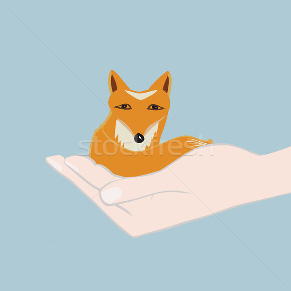 Cute little fox cupped in a hand Stock photo © veralub
