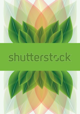 Botanical background of stylised leaves Stock photo © veralub