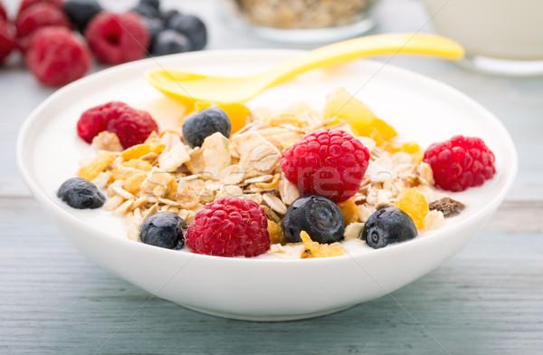 Porridge mit berries Stock photo © vertmedia