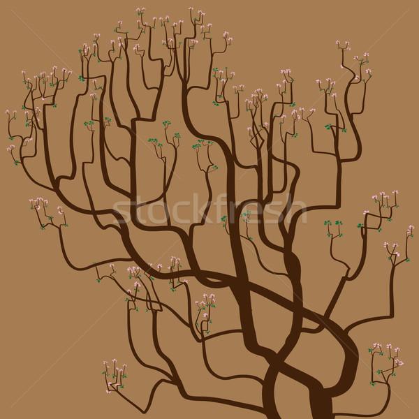 аннотация рисунок дерево коричневый весны Сток-фото © Vertyr