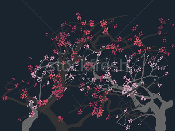 抽象的な 図面 開花 ツリー 花 春 ストックフォト © Vertyr