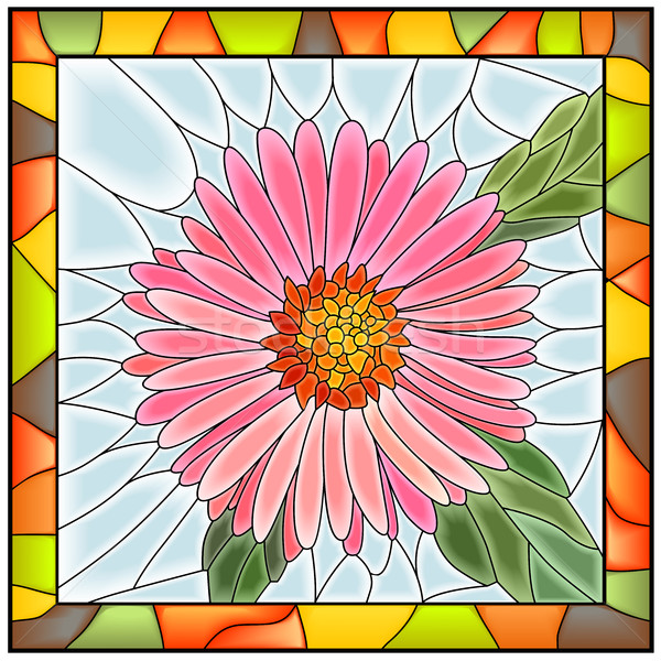 Vector illustration of flower pink aster. Stock photo © Vertyr