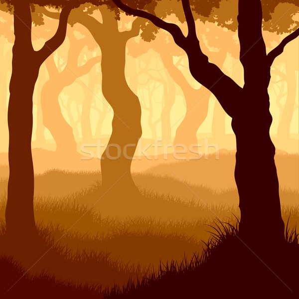 Square illustration within forest. Stock photo © Vertyr