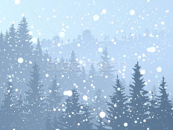 Wild bos sneeuwval Blauw hout Stockfoto © Vertyr