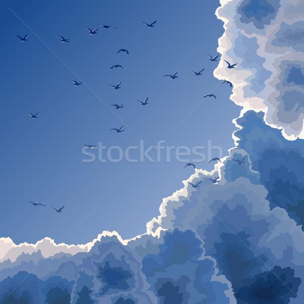 Blue sky nuvens aves grande luz Foto stock © Vertyr