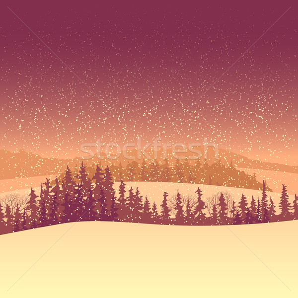 зима лес утра долины Сток-фото © Vertyr