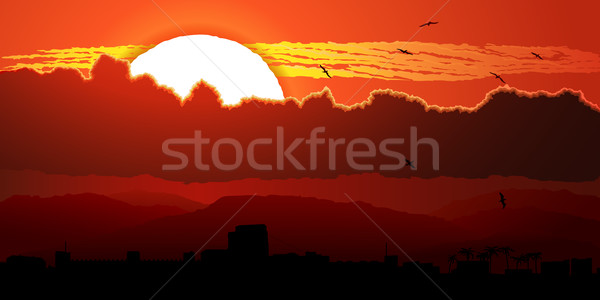 Flying birds against orange sunset in clouds. Stock photo © Vertyr