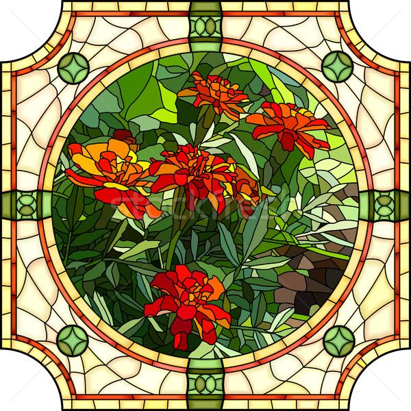 Vector illustration of flower red marigold. Stock photo © Vertyr