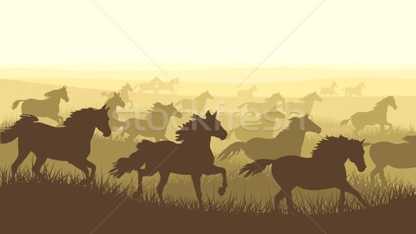 Horizontal ilustração rebanho cavalos silhueta grama Foto stock © Vertyr