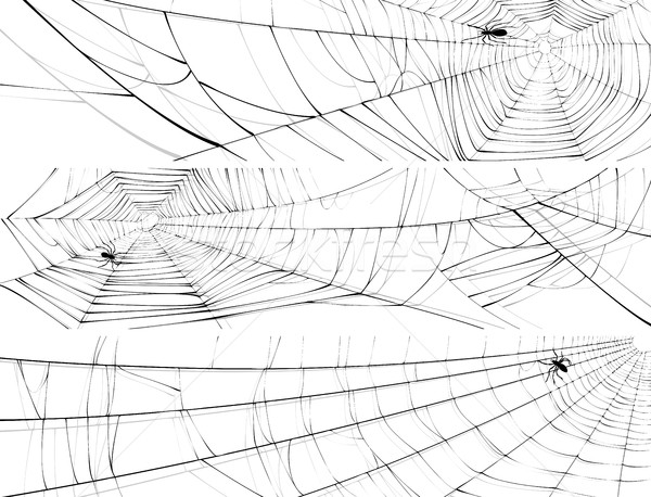 Horizontal banner of web of spider. Stock photo © Vertyr