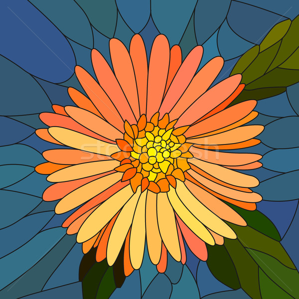 Vector illustration of flower orange aster. Stock photo © Vertyr