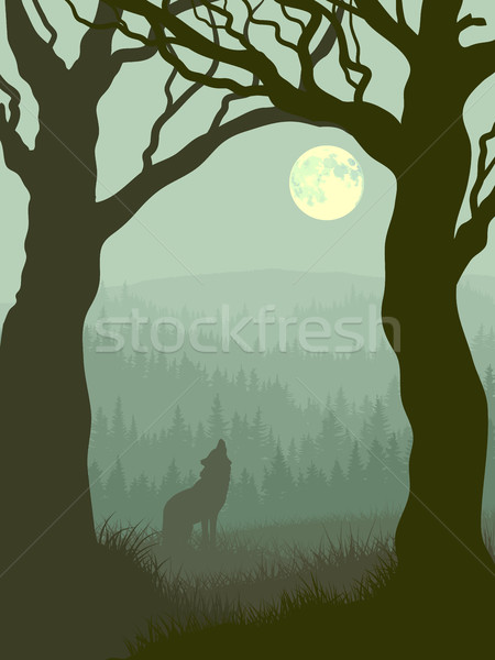 Square illustration of wolf howling at moon. Stock photo © Vertyr