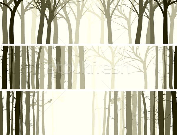Horizontal banner with many tree trunks. Stock photo © Vertyr