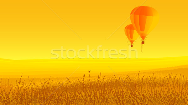 Two air balloons, ground and sunset. Stock photo © Vertyr