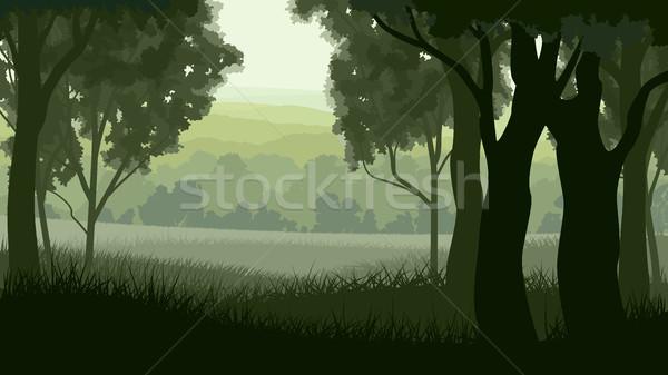 水平な 実例 森林 ツリー トランクス 木材 ストックフォト © Vertyr