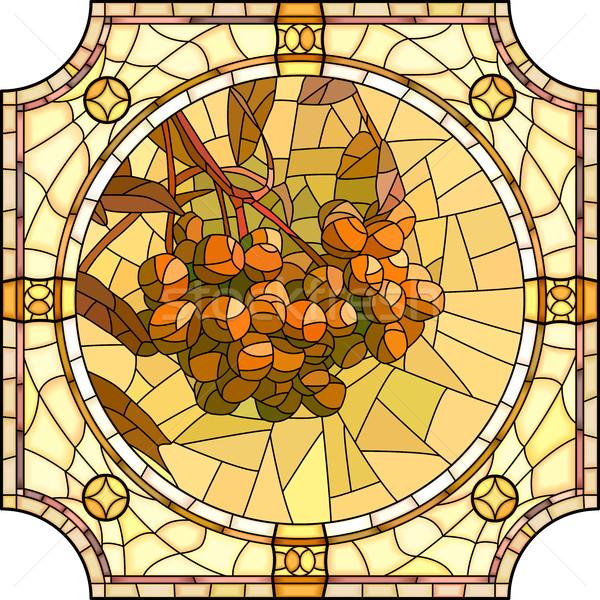 Vector illustration of flower orange rowan branch with berries. Stock photo © Vertyr