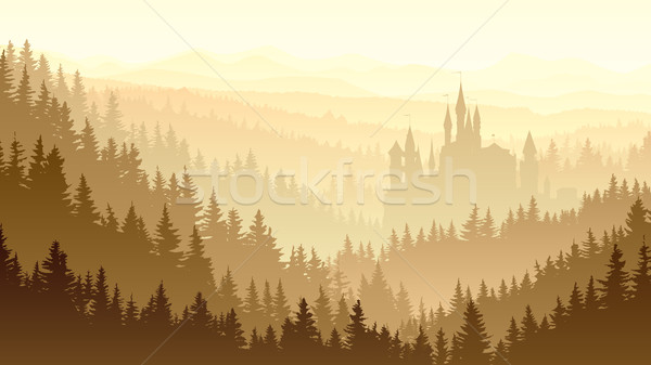 Sauvage misty bois château forêt Photo stock © Vertyr